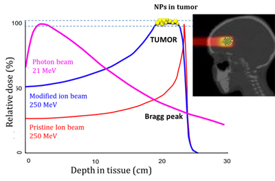 Motivation- amplification of the ion radiation effects in the tumor
